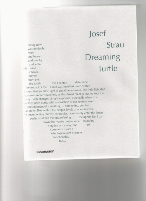 STRAU, Joseph - Dreaming Turtle (Secession)