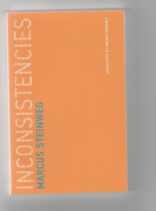 STEINWEG, Marcus - Inconsistencies (MIT Press)